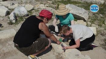 """Доброволци консервират базилика в крепостта """"Палматис"""" край Тервел"""