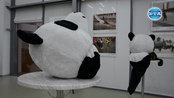 """Откриването на фотоизложбата """"Зимен Китай"""" в Бургас бе съпътствано от уъркшоп по китайски изкуства и занаяти"""