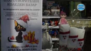 В Добрич се проведе Коледен базар за бездомни котки