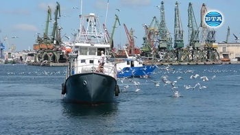 Риболовът в Черно море трябва да е устойчив и щадящ
