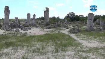 """Природната забележителност """"Побити камъни"""" привлича все повече туристи с красивите каменни образувания в причудливи форми и разнообразието от защитени растителни видове"""