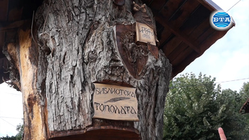 Топола на 300 години приюти в ствола си библиотека с книги на Иван Вазов