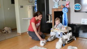 С над десет котки, куче и бебе – периодът на изолация в семейство от Благоевград