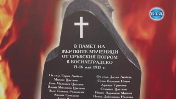"""Изложбата """"Погромът в Босилеградско 15-16 май 1917"""" е експонирана в парламента"""