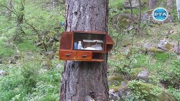 Туристи поставиха първата горска аптечка в пернишкия дял на Витоша
