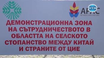 В Пловдив отвори врати Демонстрационен център 16+1 за електронна търговия с Китай