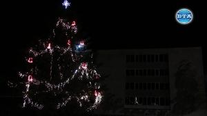 Запалиха светлините на коледната елха в Каварна...