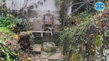 Благословена вода тече от аязмото на Чекотинския манастир